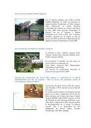 Extrait rapport activités SATVPF - Région Guyane