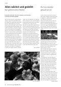 GEMEINDEzeitung der Martin-Luther-Gemeinde Juni/Juli 2013 - Page 6