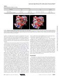 Substrate Specificity of MarP, a Periplasmic ... - Craiklab.ucsf.edu - Page 7