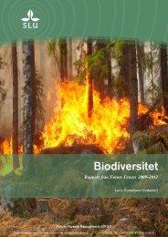 FFRapport_Biodiversitet 2013-08-13