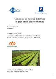 Scarica la relazione dettagliata - Regione Campania