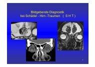 SHT - Radiologie