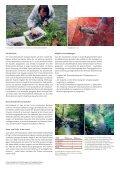 Fauna der Fliessgewässer: mit neuem Standard die Vielfalt messen - Page 2