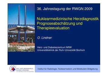 RWGN 2009 Prognose