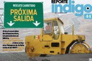 rEsCatE CarrEtEro - Reporte Indigo