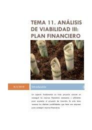 tema 11. análisis de viabilidad iii: plan financiero