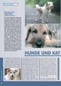 RDT 2/2009 - Bund gegen Missbrauch der Tiere ev - Seite 6