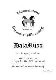 Utställning av gotlandsruss DalaTravet Rättvik Lördagen den 5 juli ...