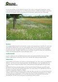Unsere Position zur Entwicklung des Grünzugs Nord-Ost und zur ... - Seite 6