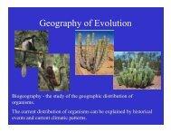 Geography of Evolution.pdf