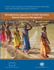 Strengthening Capacity for Conflict-Sensitive Natural ... - UNEP