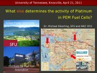 What else determines the activity of Platinum in PEM Fuel Cells?