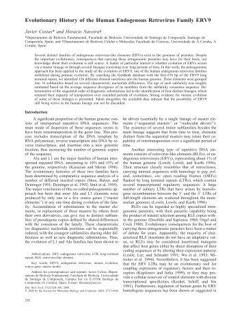 Evolutionary History of the Human Endogenous Retrovirus Family ...