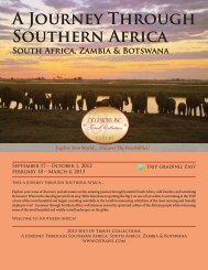 A Journey Through Southern Africa - oitravel