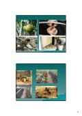 mengambil minyak kuin - Non-Timber Forest Products Exchange ... - Page 6
