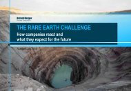 the rare earth challenge - Roland Berger Strategy Consultants