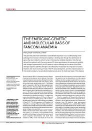 the emerging genetic and molecular basis of fanconi anaemia