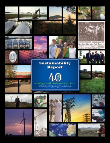 Sustainability Report - Ecology & Environment