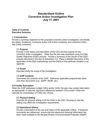 Corrective Action Investigation Plan