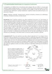 L'expérience en PDF - BiOutils - Université de Genève