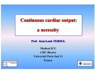 Continuous cardiac output - PULSION Medical Systems SE
