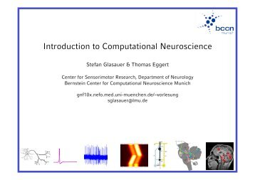 Introduction to Computational Neuroscience