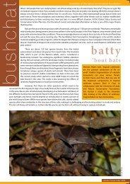 'bout bats - Nature Conservation Foundation