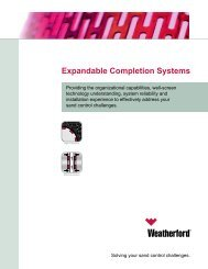 Expandable Completion - Weatherford International