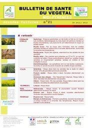 n° 21 - Chambre régionale d'agriculture Midi-Pyrénées