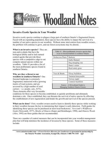 Invasive Exotic Species in Your Woodlot - Ontario woodlot.com
