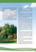 Význam a funkcie mokradí - ŠOP SR - Page 3