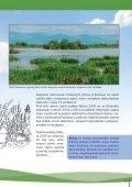 Význam a funkcie mokradí - ŠOP SR - Page 5