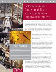 Continuous Improvement Process (CIP) - USC Consulting Group