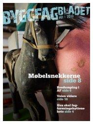 Byggfagbladet 1 2010 - Tømrer og Byggfagforeningen