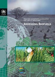 Towards Sustainable Production and Use of Resources - UNEP