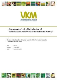 Assessment of risk of introduction of Echinococcus multilocularis to ...