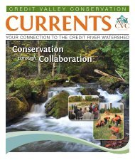 Currents – Summer 2013 - Credit Valley Conservation