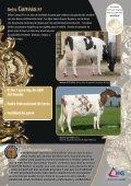 Canvas provee una producción de leche rentable - Page 2