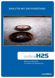 Online H 2 S Überwachung - Das Institut