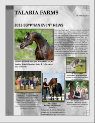 Download Talaria Farms Summer 2013 Newsletter - The Pyramid ...