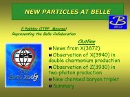 NEW PARTICLES AT BELLE - HEPHY
