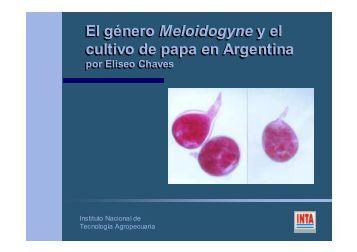 EL GÉNERO Meloidogyne Y EL CULTIVO DE PAPA EN LA ...