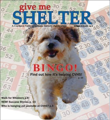 BINGO! - the Cocheco Valley Humane Society