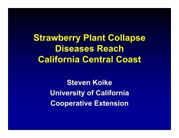 Strawberry Plant Collapse - Santa Cruz County - University of ...