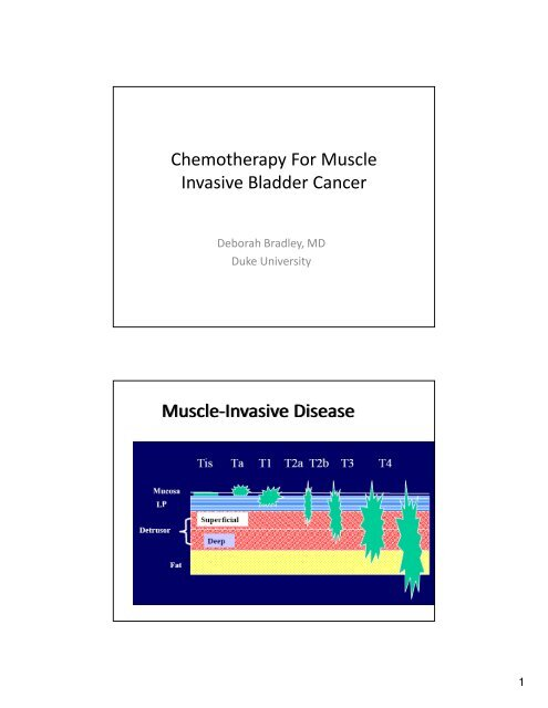 Chemotherapy For Muscle Invasive Bladder Cancer Muscle ...