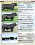 WELCOME TO THE CLARK ANGUS FARMS DISPERSAL ... - Page 3