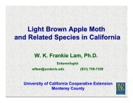 leafrolling moth family - Monterey County - University of California ...