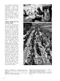 photos de sport de l'année 2002 - Magazine Sports et Loisirs - Page 4