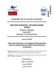 Physique et Nanomatériaux - Faculté des Sciences et Techniques ...
