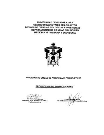 Producción de bovinos carne - Centro Universitario de los Altos